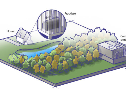Landscape reconstruction illustration
