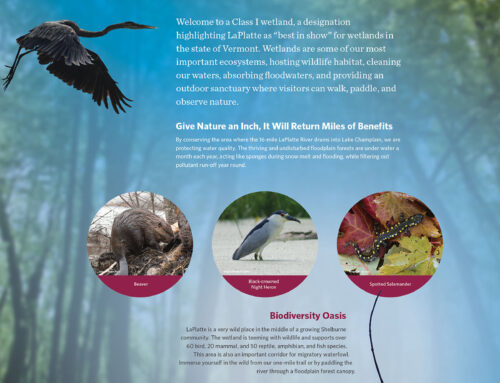 Interpretive Sign Design II
