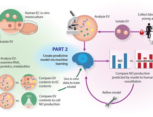 Extracellular vesicles and cardiac health